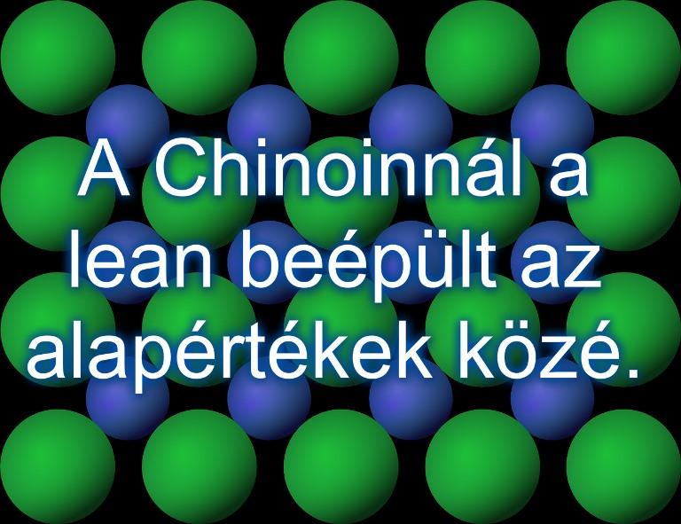 Lean menedzsment a gyógyszeriparban - A Chinoinnál a lean beépült az alapértékek közé.
