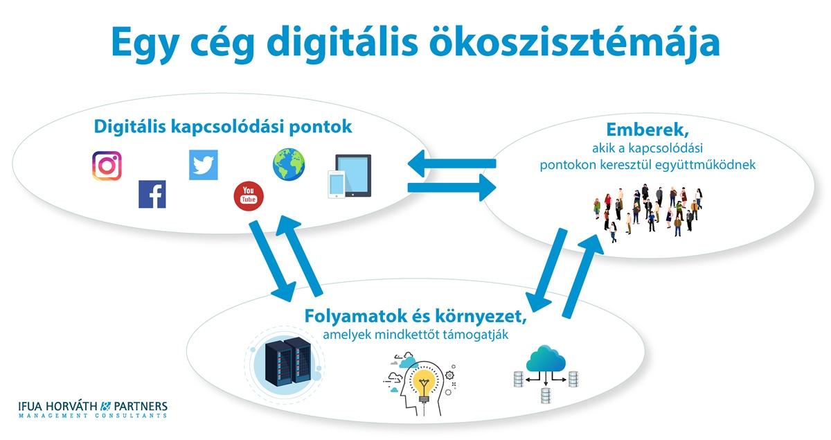 digitális ökoszisztéma